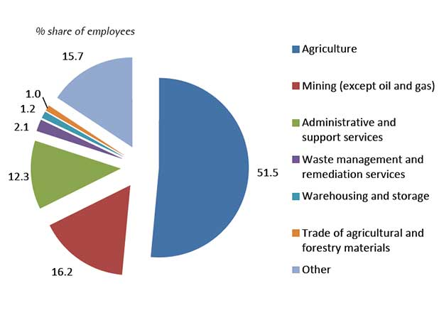 Figure 2.  IMMEX non-manufacturing employment by sector, 2014