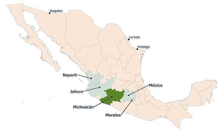 Avocado Growing States. Mexico