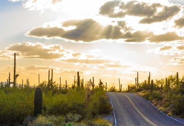 Tucson is Expected to Regain Momentum Next Year